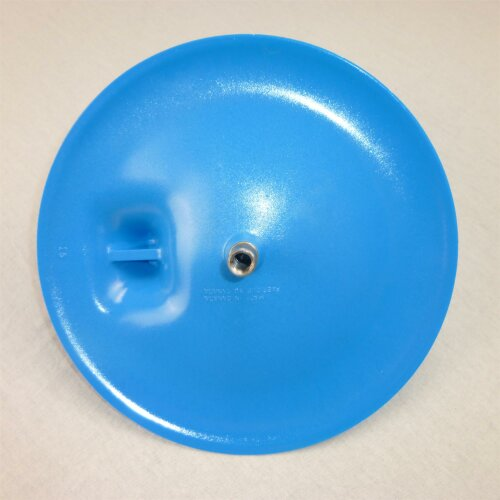Curling Stone Handle lightblue
